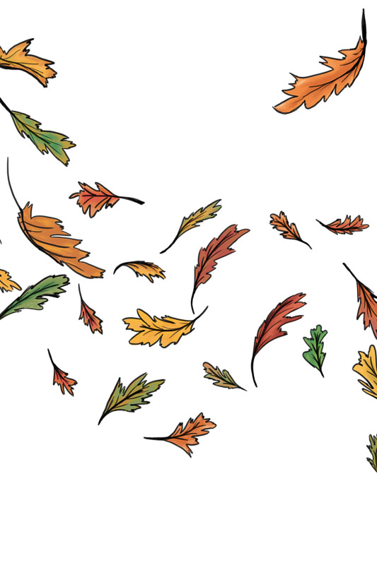 Autumnal Leaves fluttering in the wind, drawn with Adobe Photoshop
