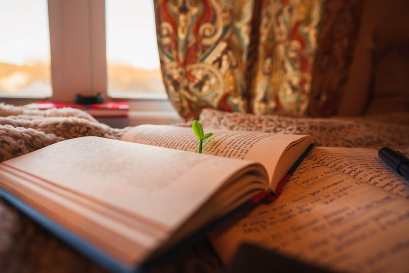 """An image of my small sprout bookmark, marking my page in """"Midnight Library"""" by Matt Haig on the bed."""